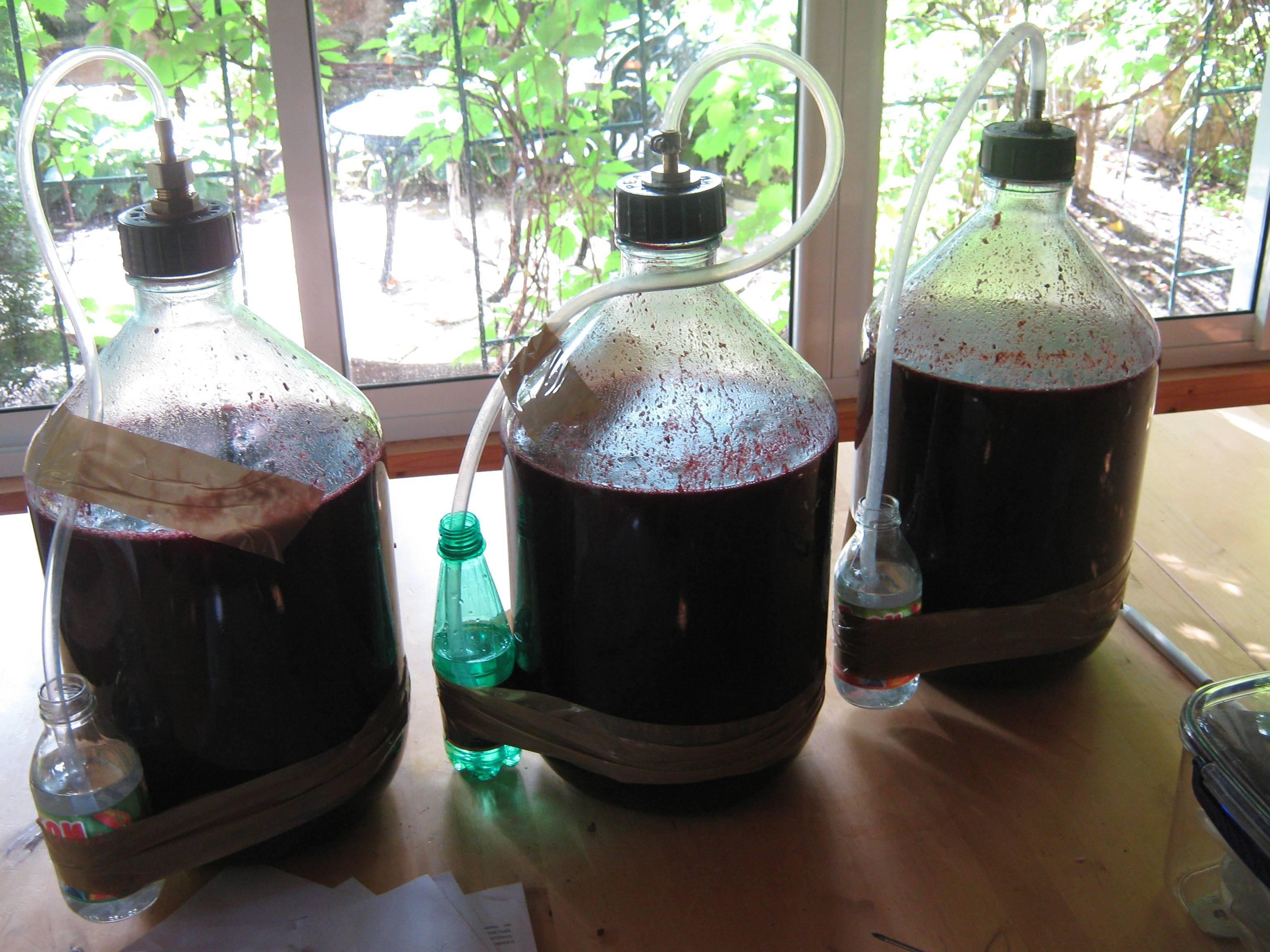 Что такое гидрозатвор, как изготовить его для брожения вина