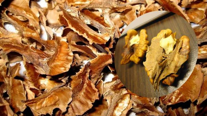 Лекарь для всей семьи — настойка из перегородок грецкого ореха, ее польза и применение