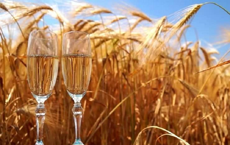 Блог дорофеева павласамогон на пшенице без дрожжей: простой рецепт с фото самогон на пшенице без дрожжей: простой рецепт с фото