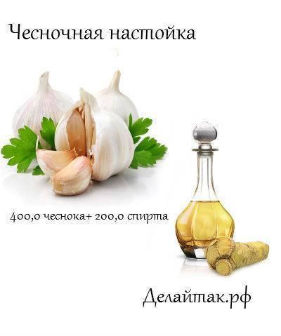 Лимон, чеснок и мед в лечении сосудов – очистка и укрепление