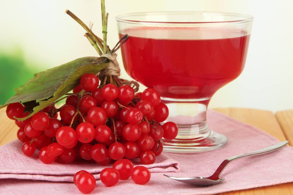 Настойка из калины на спирту и самогоне – 3 рецепта