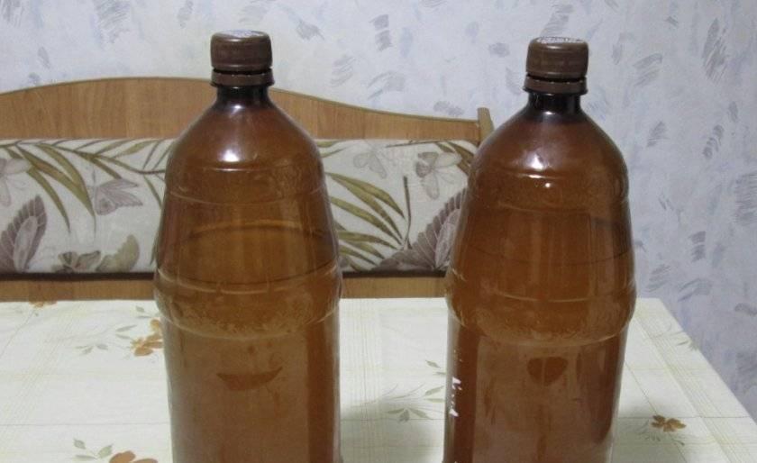 Простой рецепт приготовления медовухи в домашних условиях