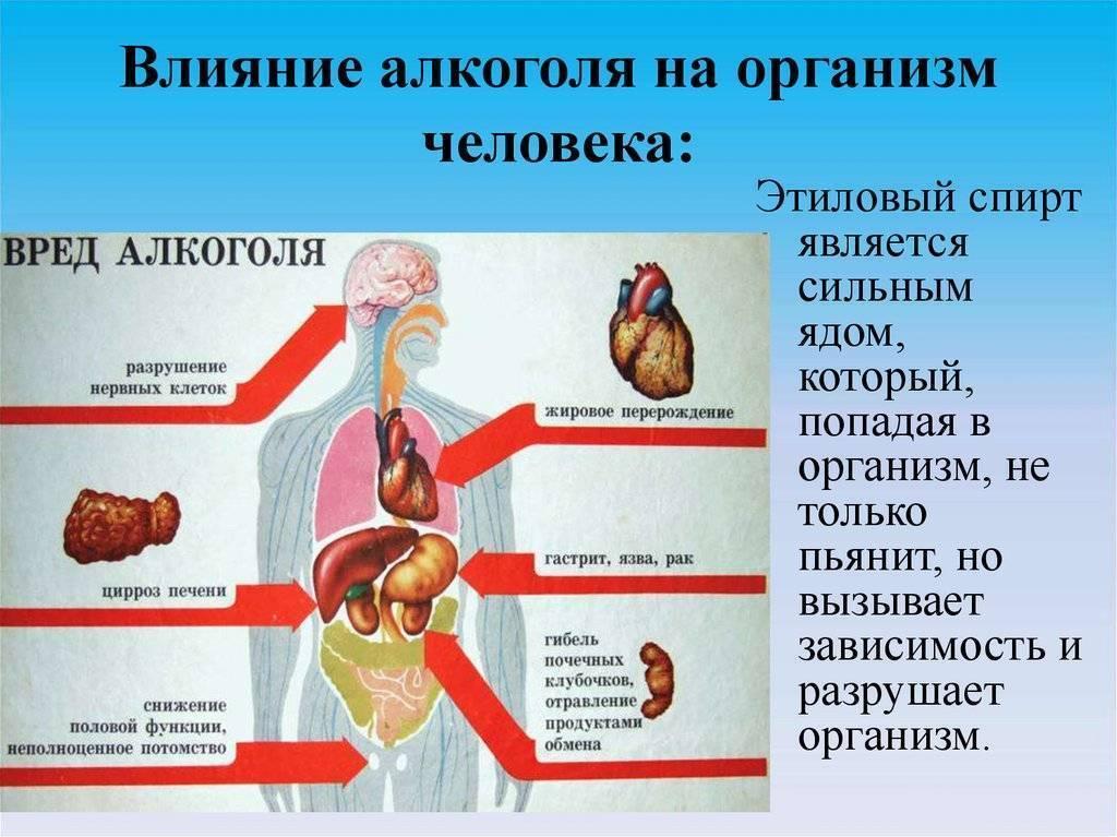 Влияние хронической алкогольной интоксикации на иммунитет