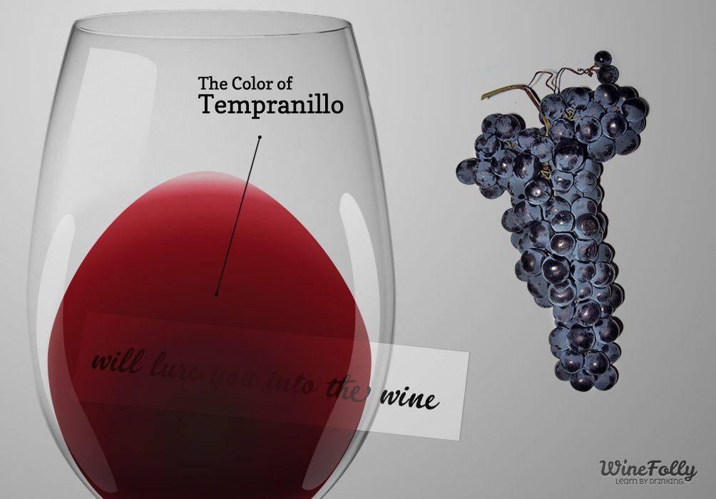 2 испанских вина в пятярочке: риоха или рибера?