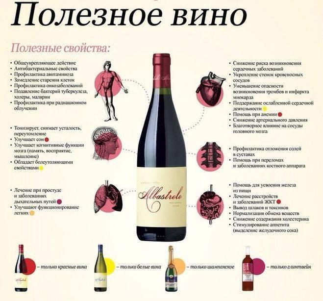 Можно ли пить красное вино при беременности: за и против