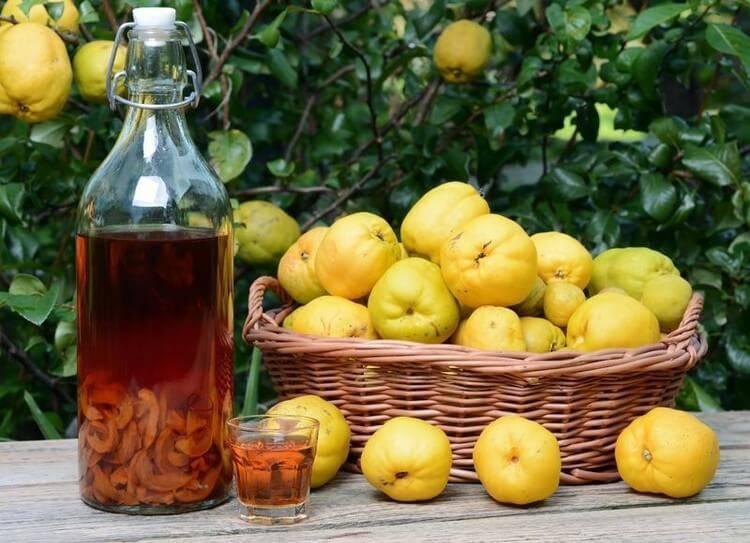 Настойка из айвы на водке: рецепт в домашних условиях