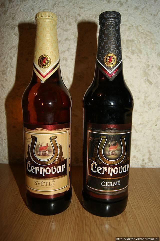 Как пить пиво в чехии?, чехия — туристер.ру
