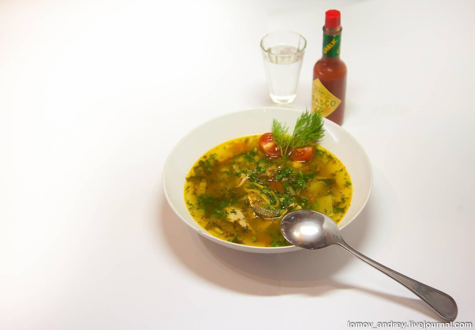 Похмельный суп: 5 лучших рецептов с фото, как приготовить