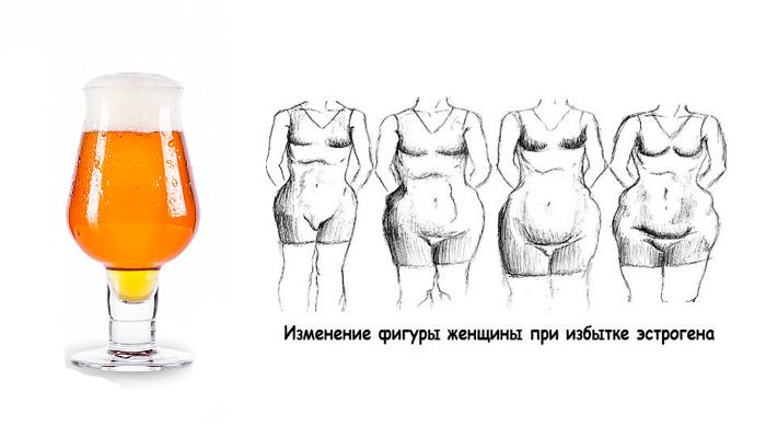 Гормоны в пиве и их воздействие на организм