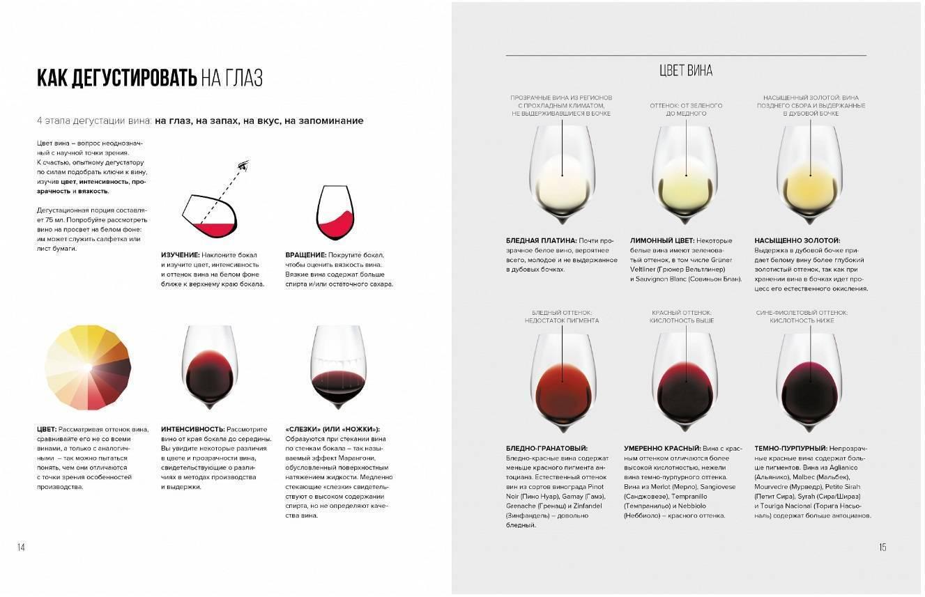 Особенности винного сорта мальбек