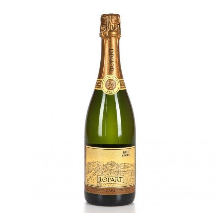 Обзор шампанского cava
