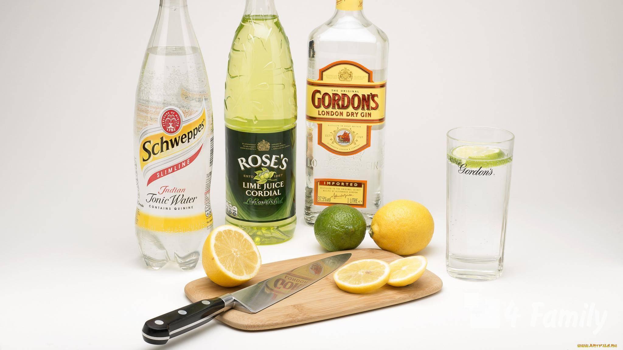 Джин - характеристики, состав, применение, рецепты, польза и вред