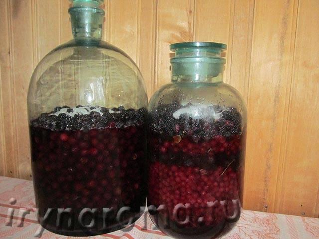 Как сделать вино из ежевики в домашних условиях - 3 рецепта