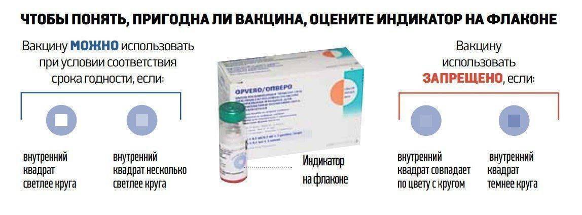 Совместимость прививки от столбняка и алкоголя