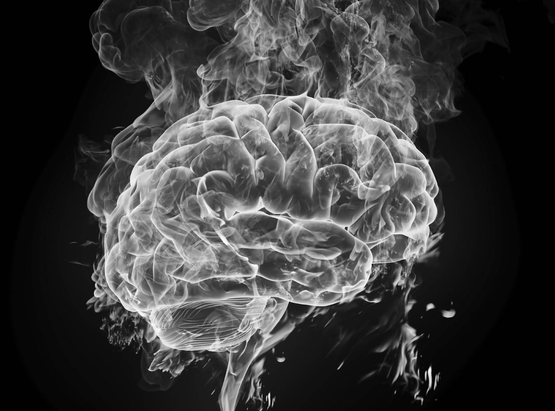 Здоровый портал: борьба с вредными привычками. бросил курить активность мозга