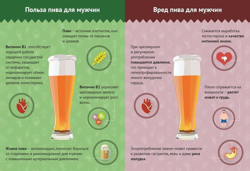 Безалкогольное пиво: польза и вред, состав, противопоказания к употреблению