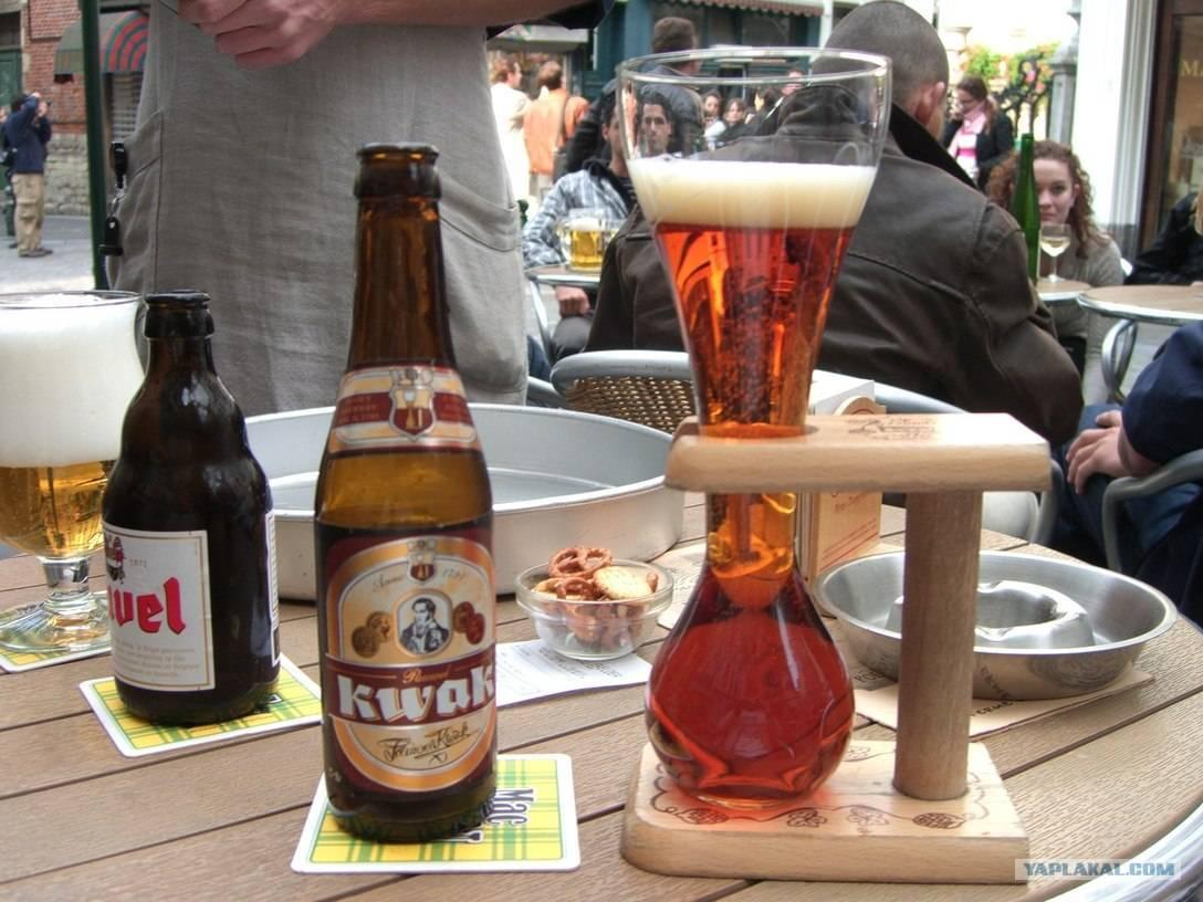 Бельгийское пиво: лучшие производители, сорта и особенности приготовления (145 фото + видео)