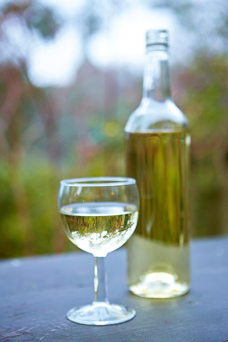 Рецепт приготовления вина из березового сока. рецепт домашнего вина из берёзового сока. простой рецепт вина из березового сока. как сделать в домашних условиях