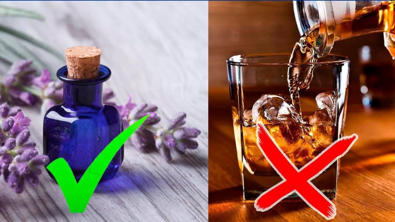 Безалкогольные коктейли, которые заменят алкоголь