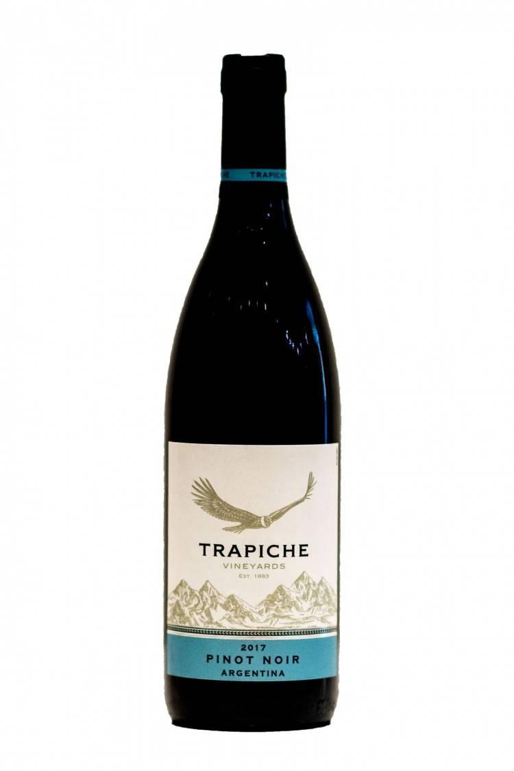 Вино пино-нуар: описание, особенности, производство и отзывы