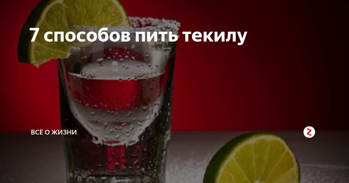 Текила как пить правильно и с чем | норма права