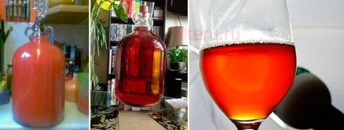 Осветление яблочного вина в домашних условиях