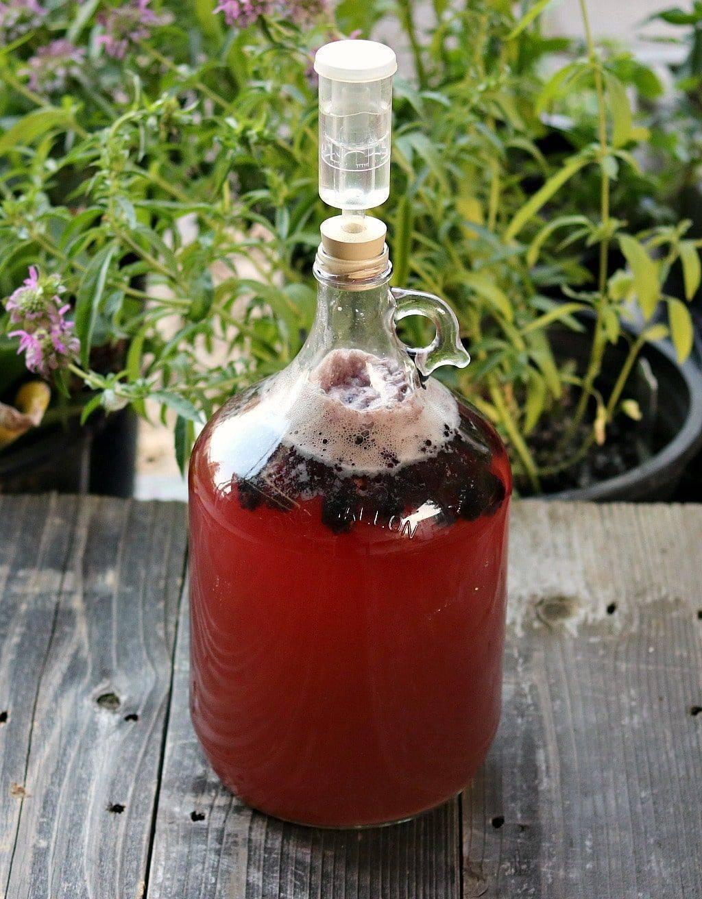 Домашние рецепты вин из ежевики: разбираем основательно