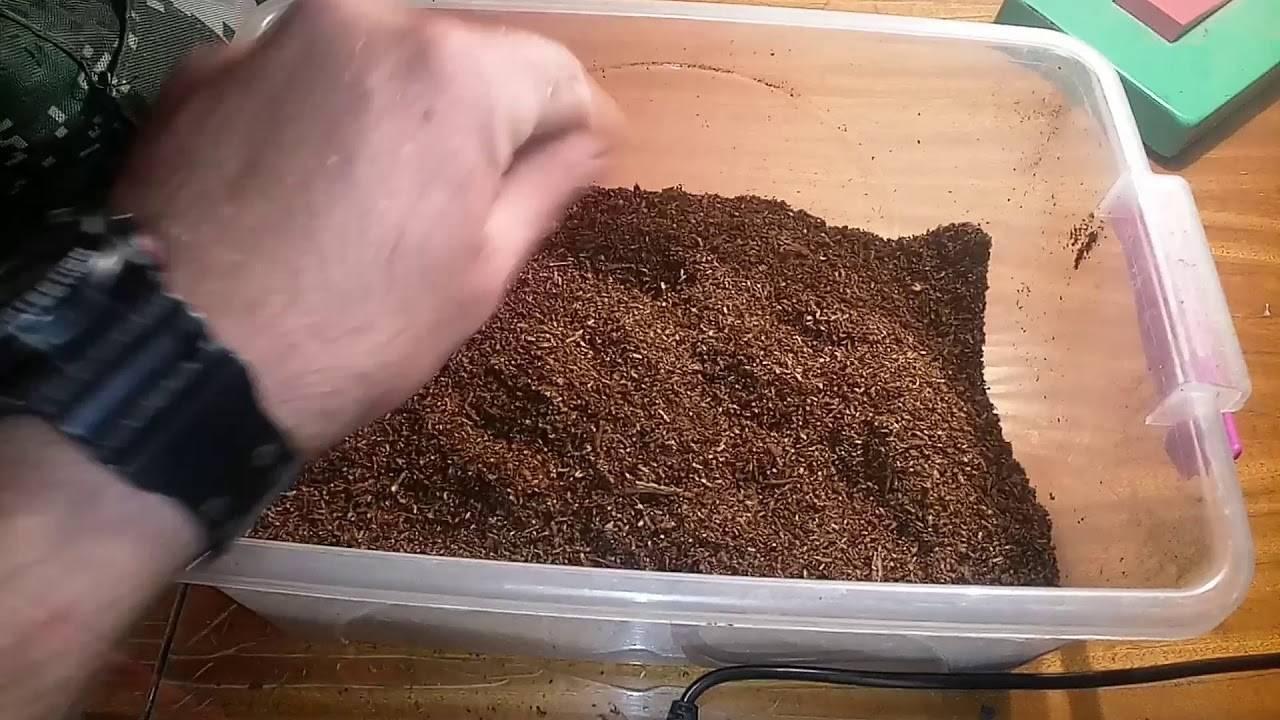 Как сделать табак для кальяна своими руками — инструкция 5 шагов