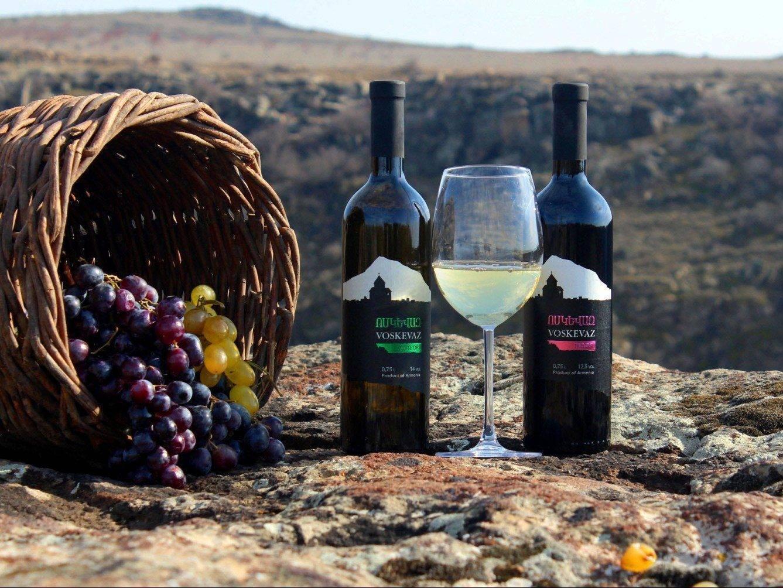 Краткие сведения о развитии виноградарства и виноделия в мире — предисловиеи введение к т. 1