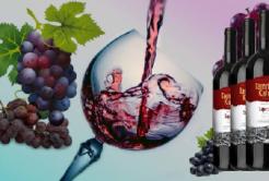 Польза красного вина для здоровья: чем полезно сухое и полусладкое вино