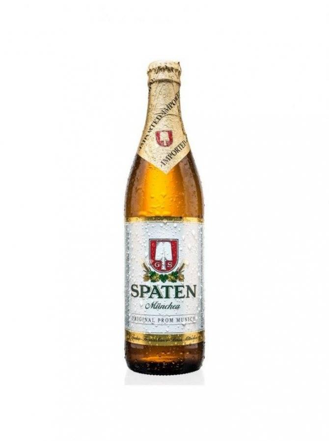 Пиво кроненберг 1664 (kronenbourg 1664) — особенности, виды и история возникновения напитка