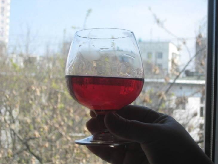 Настойка на клюкве - рецепты со спиртом, водкой, самогоном и коньяком