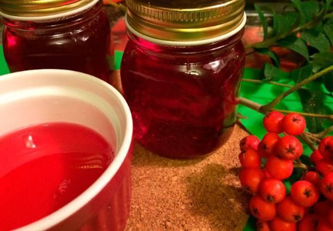 Вино из рябины красной в домашних условиях - пошаговый рецепт