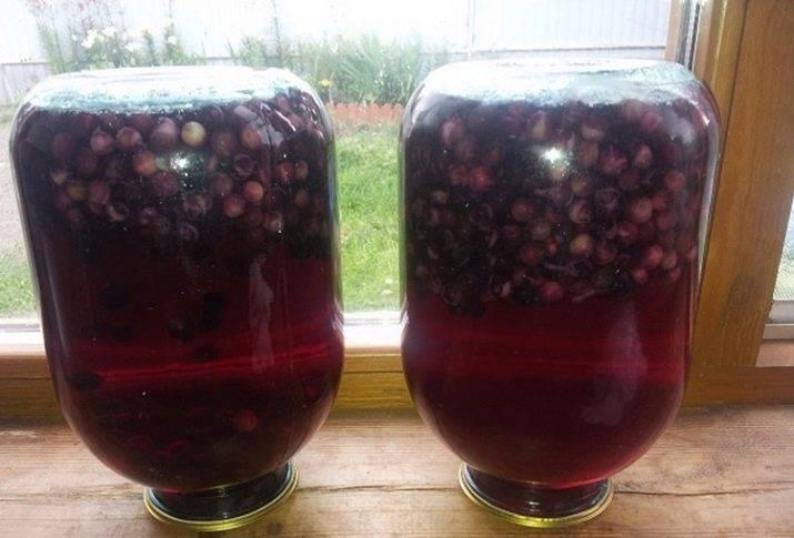 Как сделать вино из ирги. рецепт вина из ирги :: syl.ru