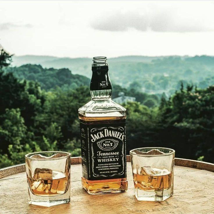 Благородный напиток: как правильно пить шотландский виски
