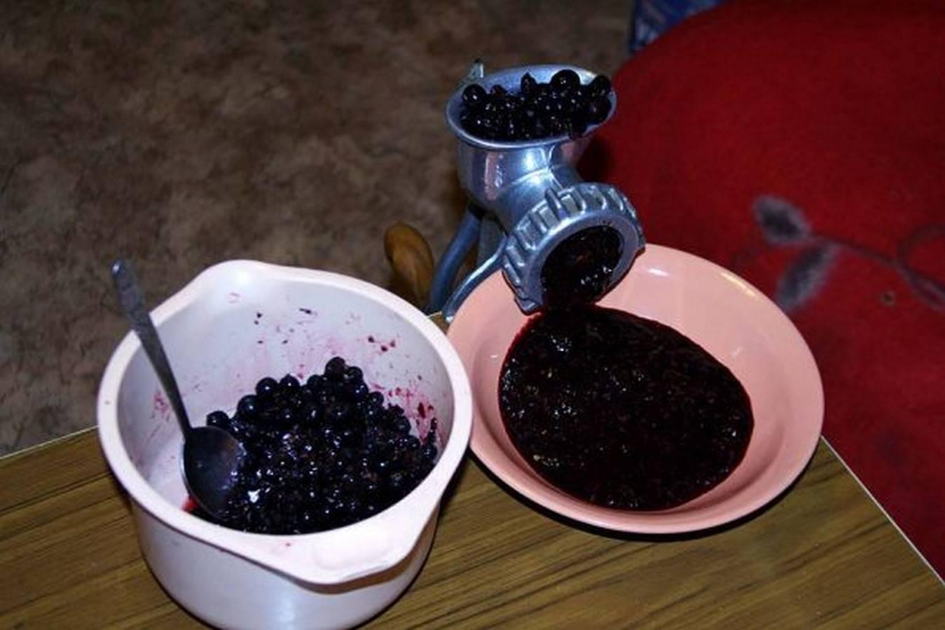 Как сделать вино из ирги. рецепт вина из ирги