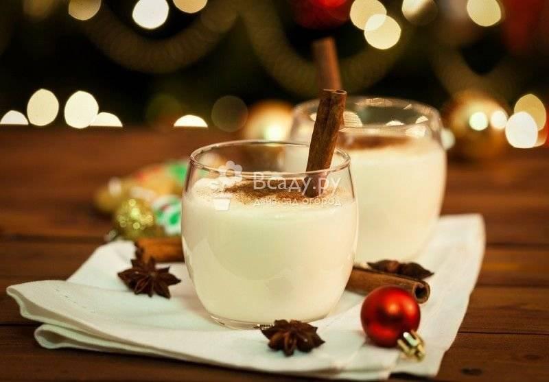 Коктейль абрикосовый эг-ног (egg nog) — особенность напитка и как его приготовить в домашних условиях