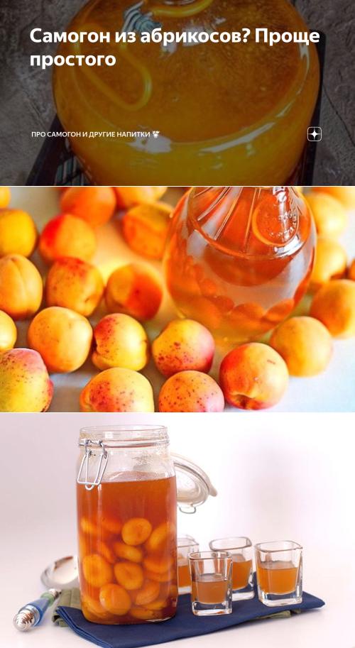 Наливка из абрикосов в домашних условиях: особенности приготовления и рецепты