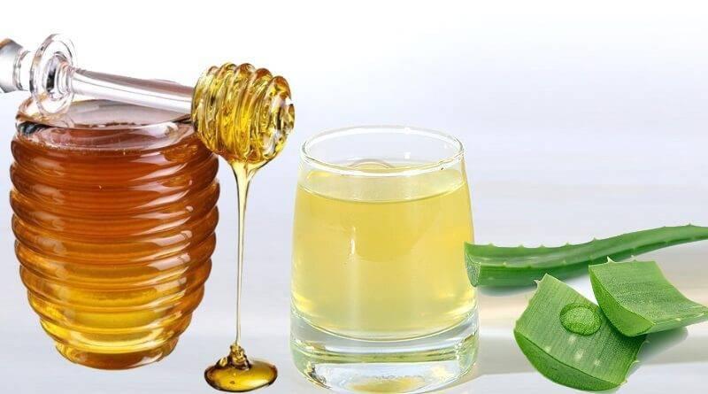Алоэ с медом что лечит, как приготовить и принимать для иммунитета, от чего и как пить алоэ, противопоказания