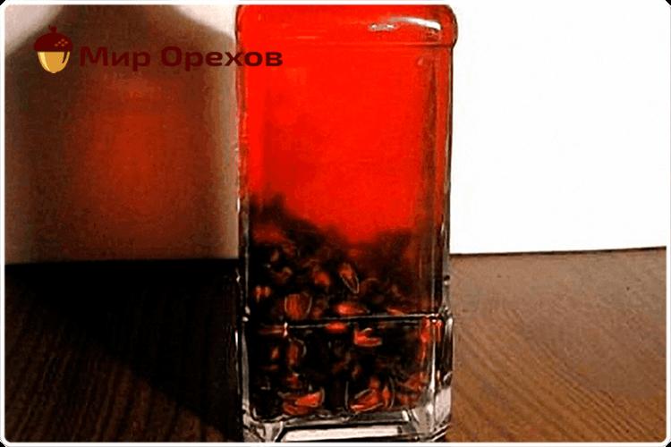 Настойка на скорлупе кедровых орехов: польза и вред, особенности применения