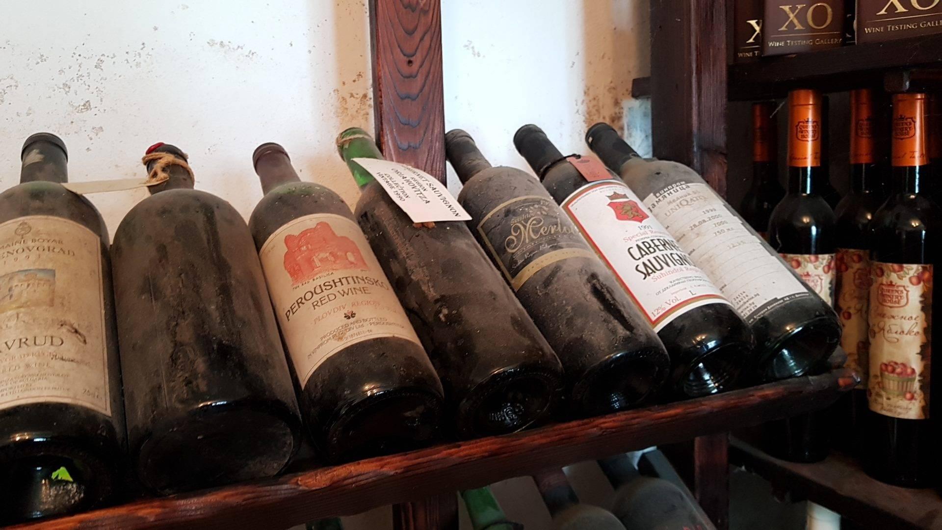 Виноград болгария: описание сорта и его фото, особенности выращивания, история селекции, болезни и вредители