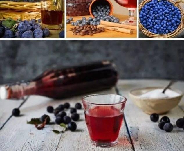 Рецепт тернового вина