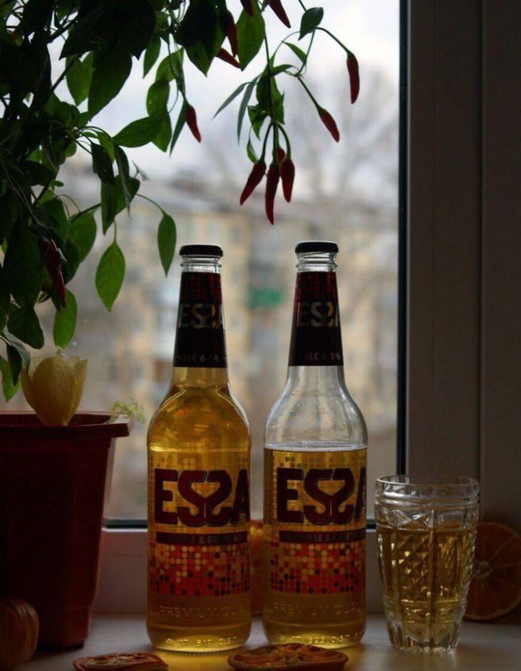 Пиво essa («эсса») - 100 фото, отзывы специалистов и методы приготовления