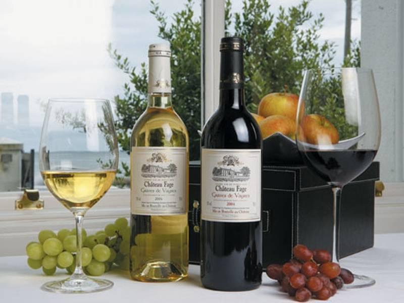 Какое выбрать белое полусладкое вино – рейтинг самых лучших марок