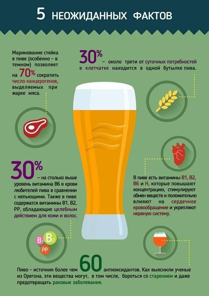 Пиво: польза и вред для здоровья мужчин