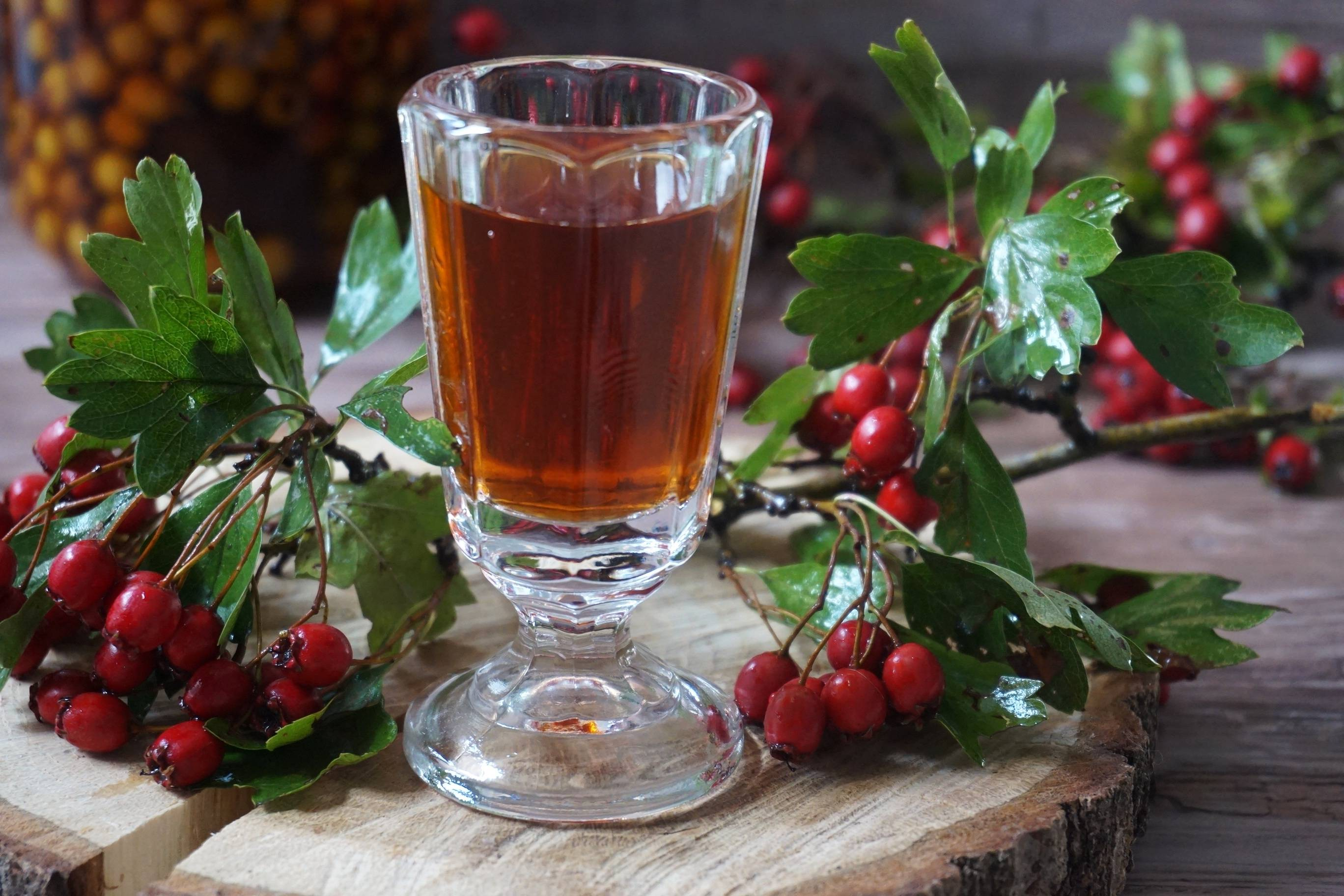 Настойка боярышника на водке — польза и вред, пошаговый рецепт приготовления
