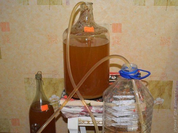 Вино из яблок: 10 простых рецептов в домашних условиях  | народные знания от кравченко анатолия