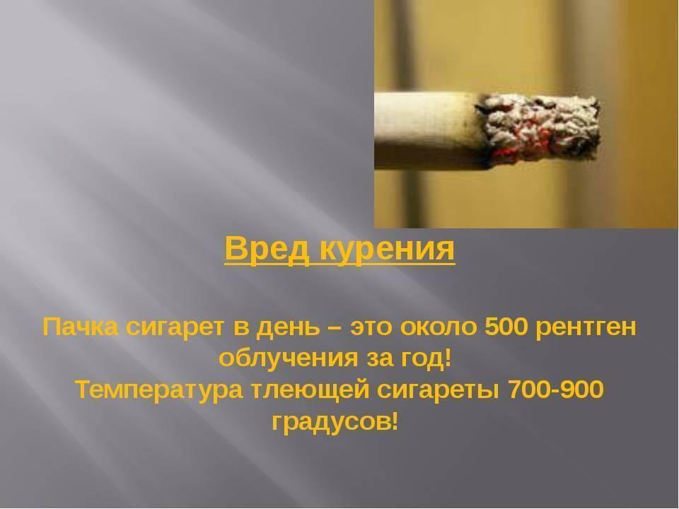 Приметы о глазах: к чему дергается веко, попал дым, выпала ресница и другие