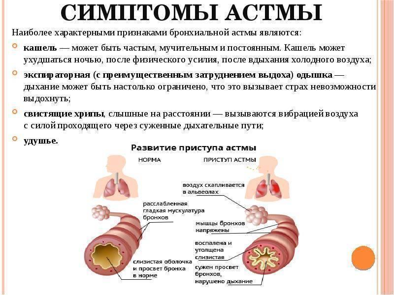 Можно ли пить алкоголь при бронхиальной астме? можно ли при астме пить алкоголь