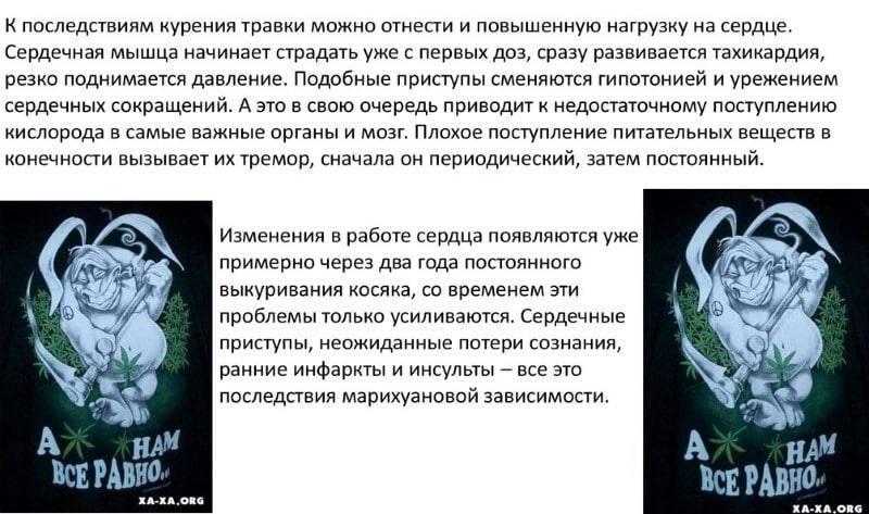 Как влияет гашиш на человека? последствия употребления гашиша для мужчин - cureprostate.ru
